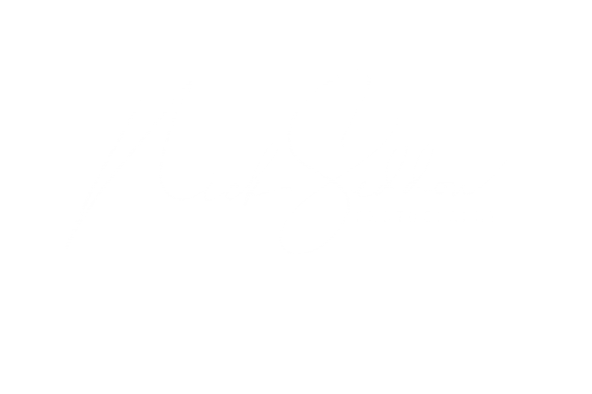 Nick Seddon Photography